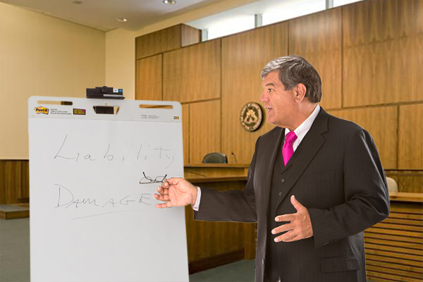 Picture of Roger Dodd lecturing in a court room.