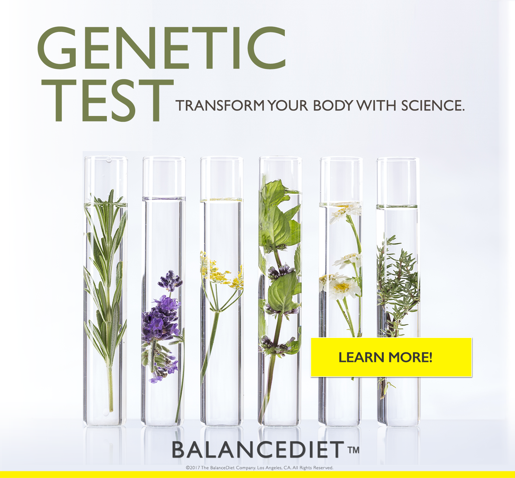 GENETIC TEST SQAURE_WITH BUTTON.png
