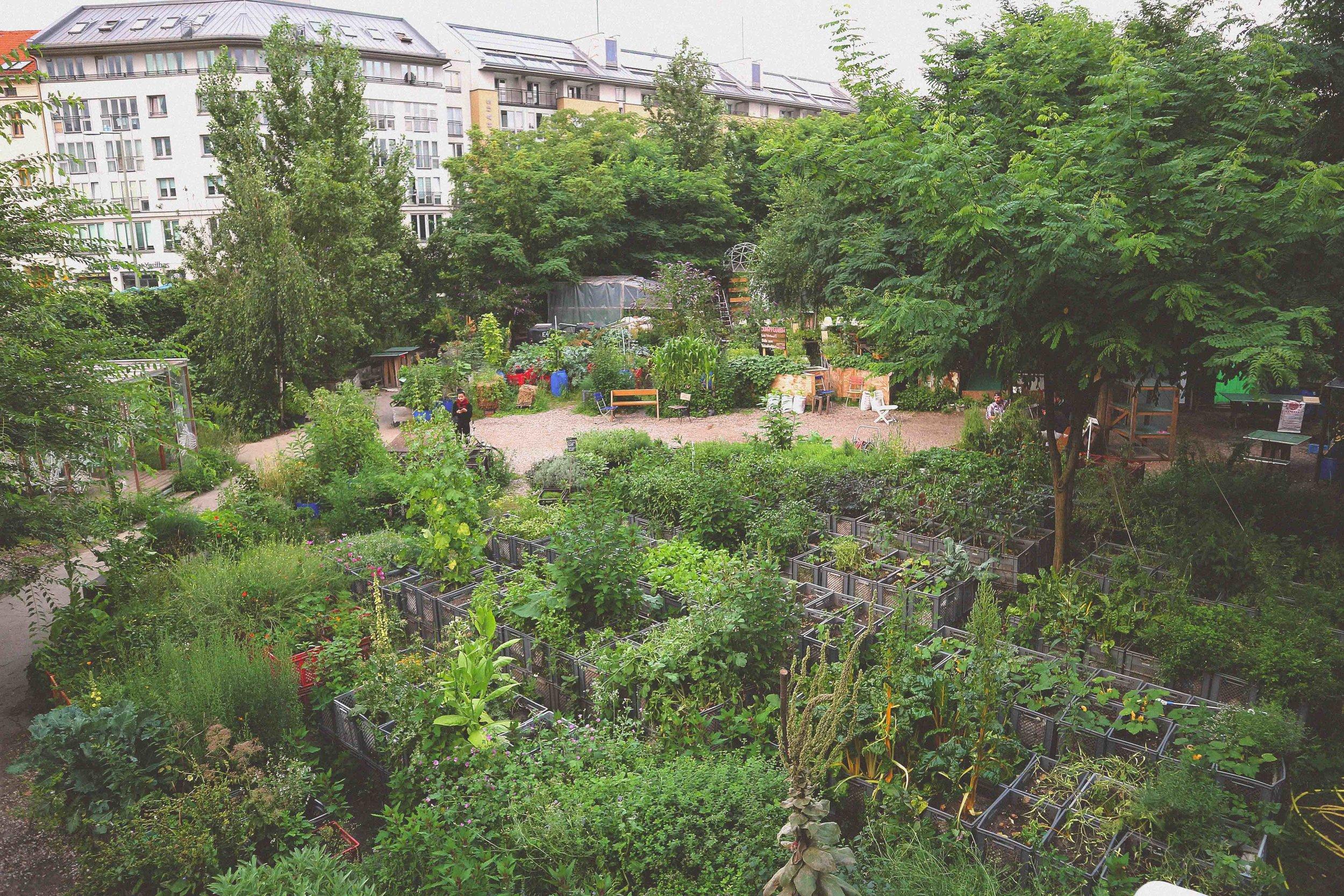 The Prinzess Innen Garten