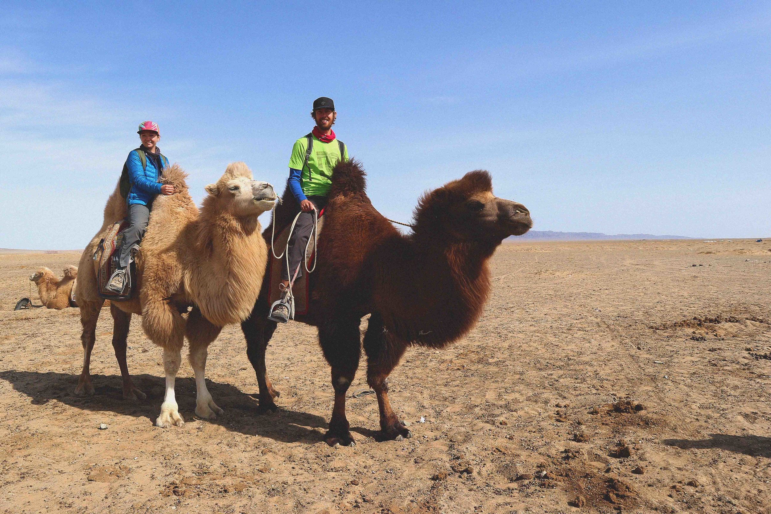 Our camel ride to the sand dunes in the gobi desert