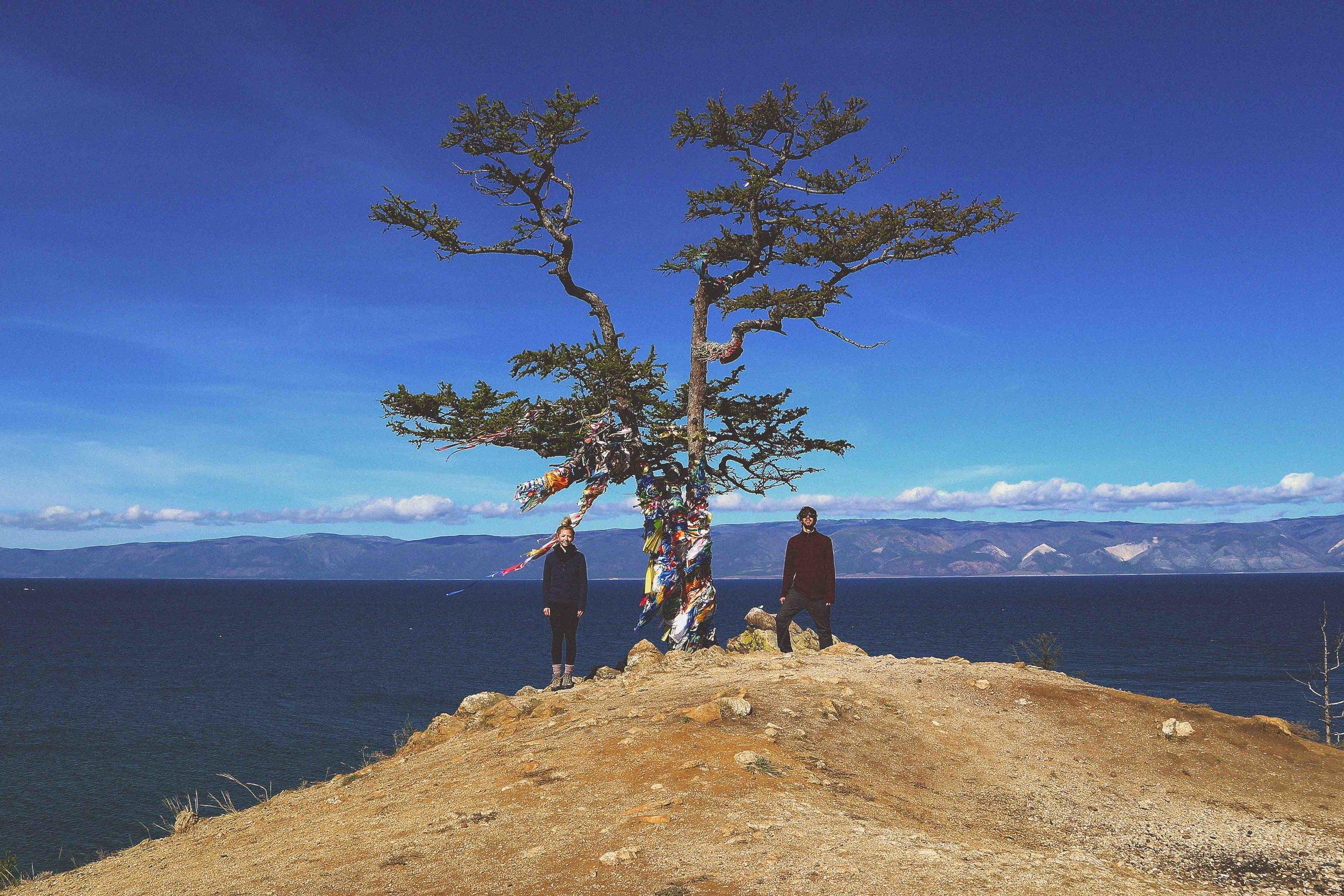 A shamanic tree on Olkhon Island (lake Baikal), Siberia, Russia