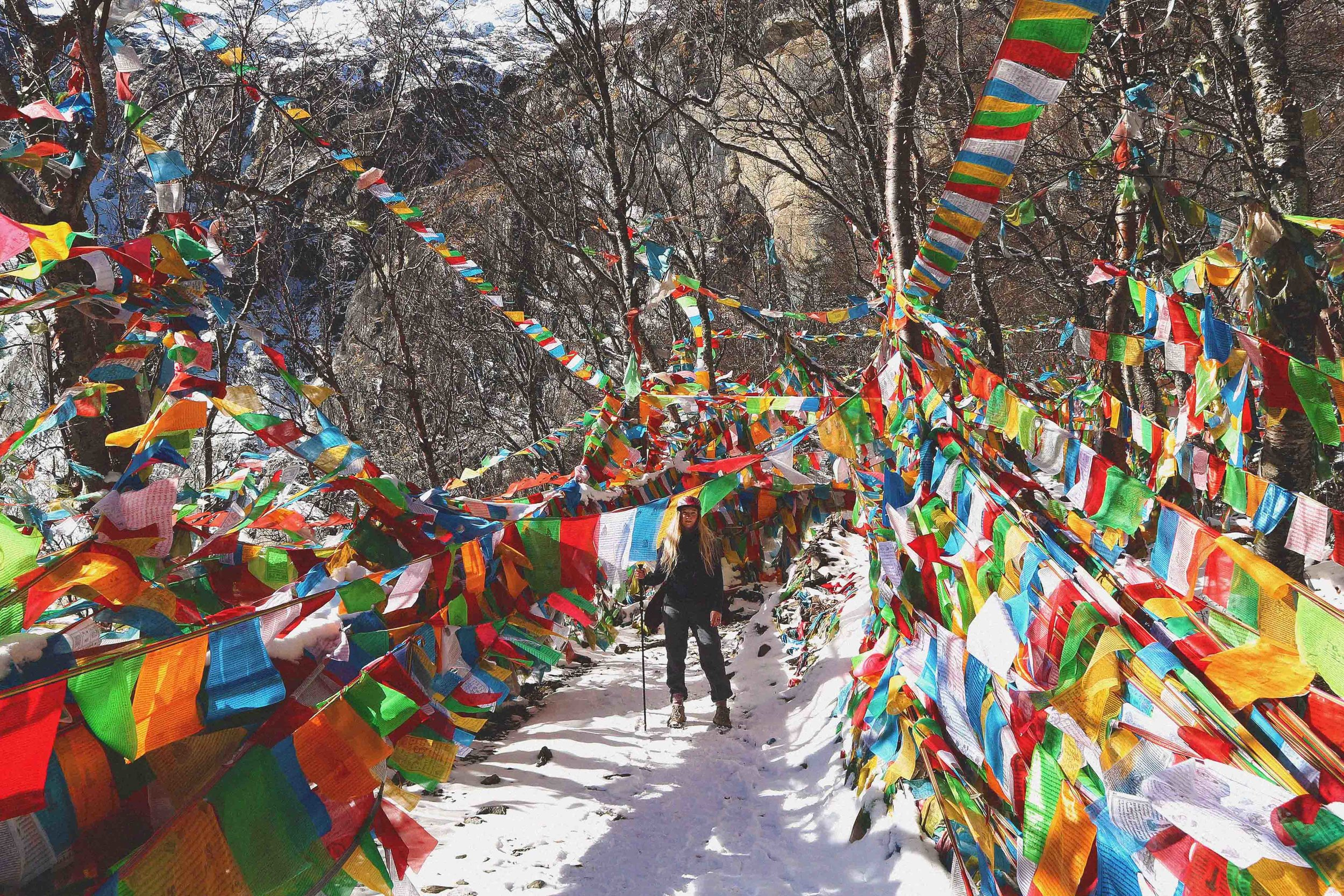 Ali in amongst the Tibetan flags