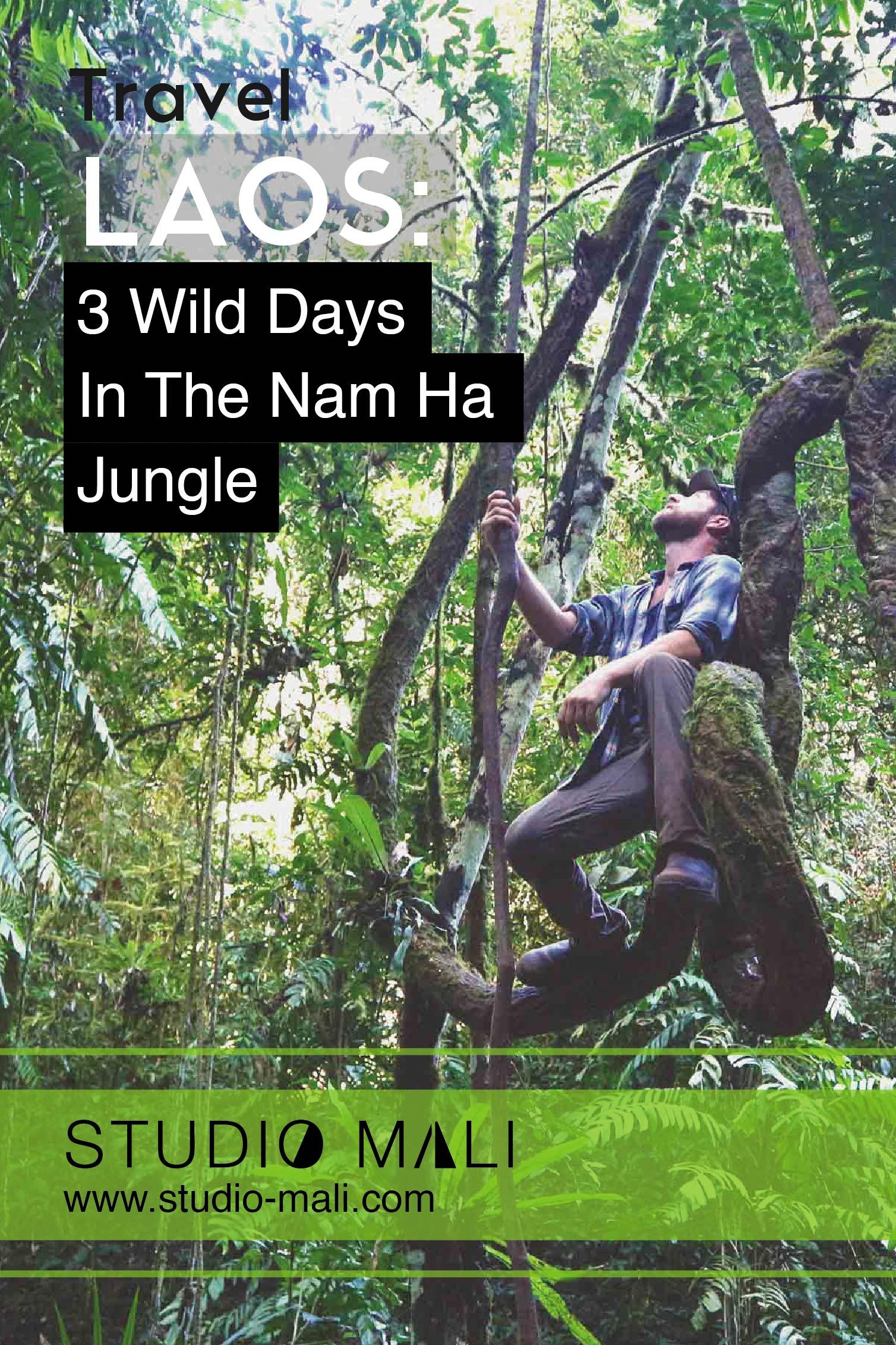 Laos - 3 Wild Days In The Nam Ha Jungle, by Studio Mali.jpg