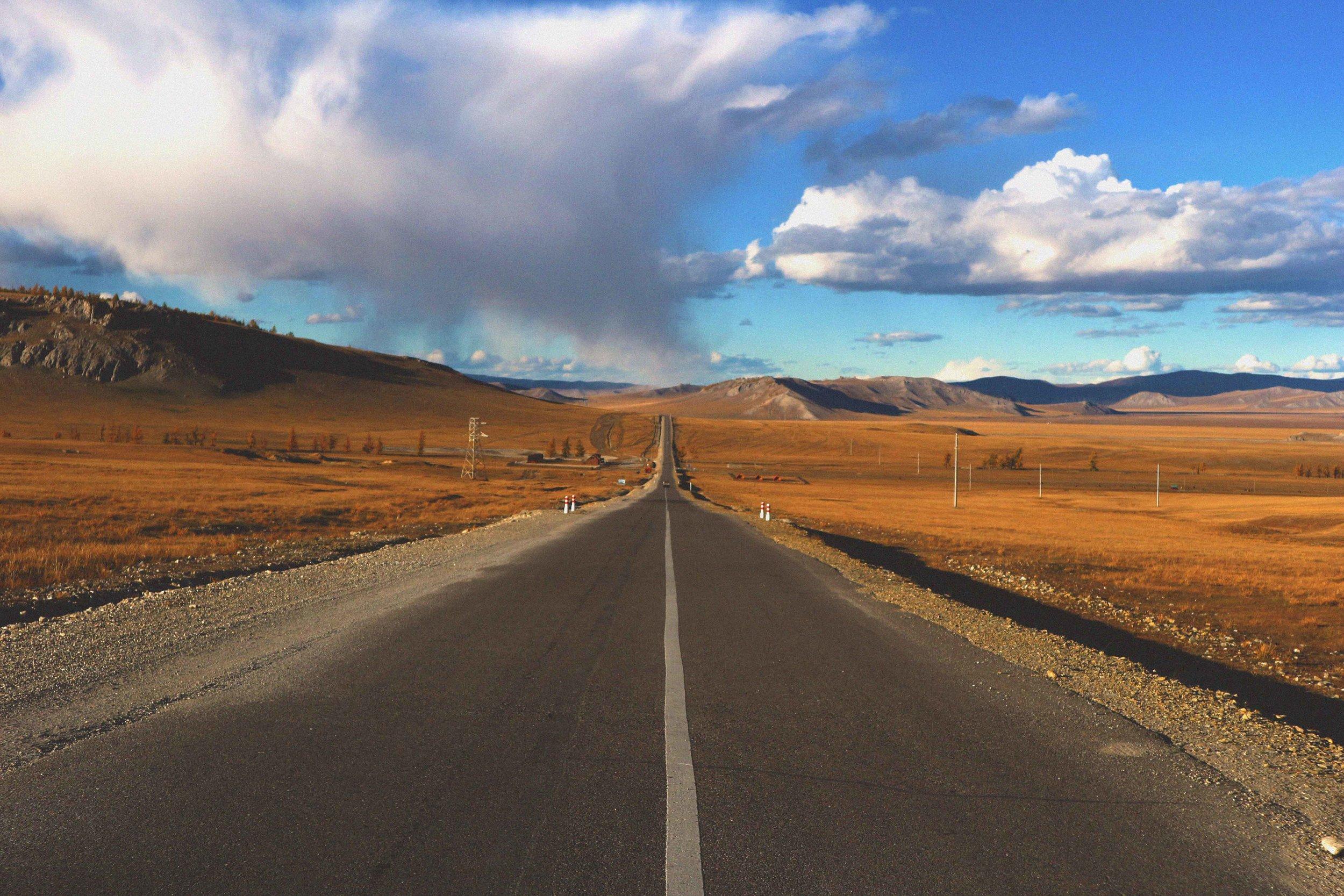 Surviving Mongolia -