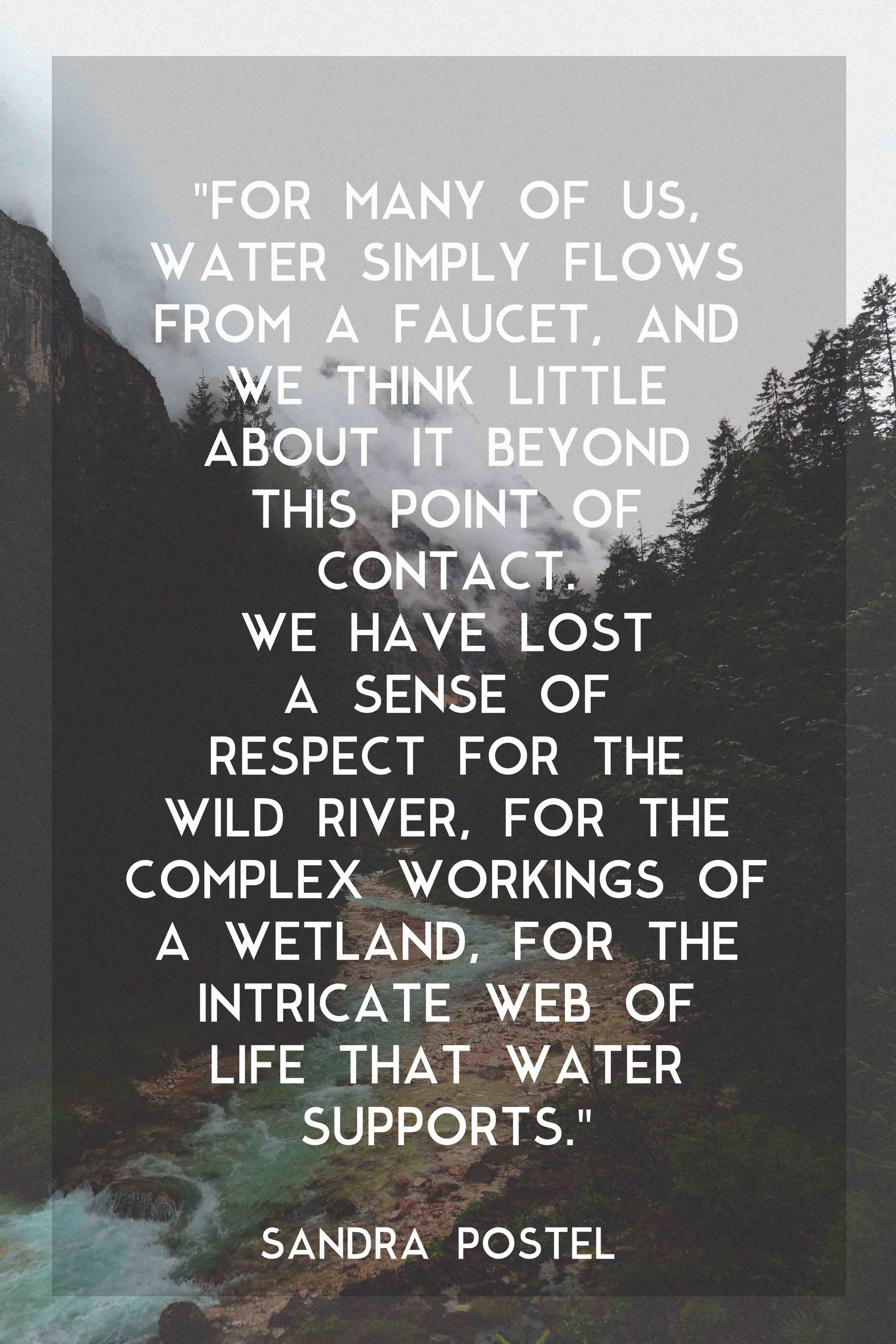 Sandra Postel - Water Quote.jpg