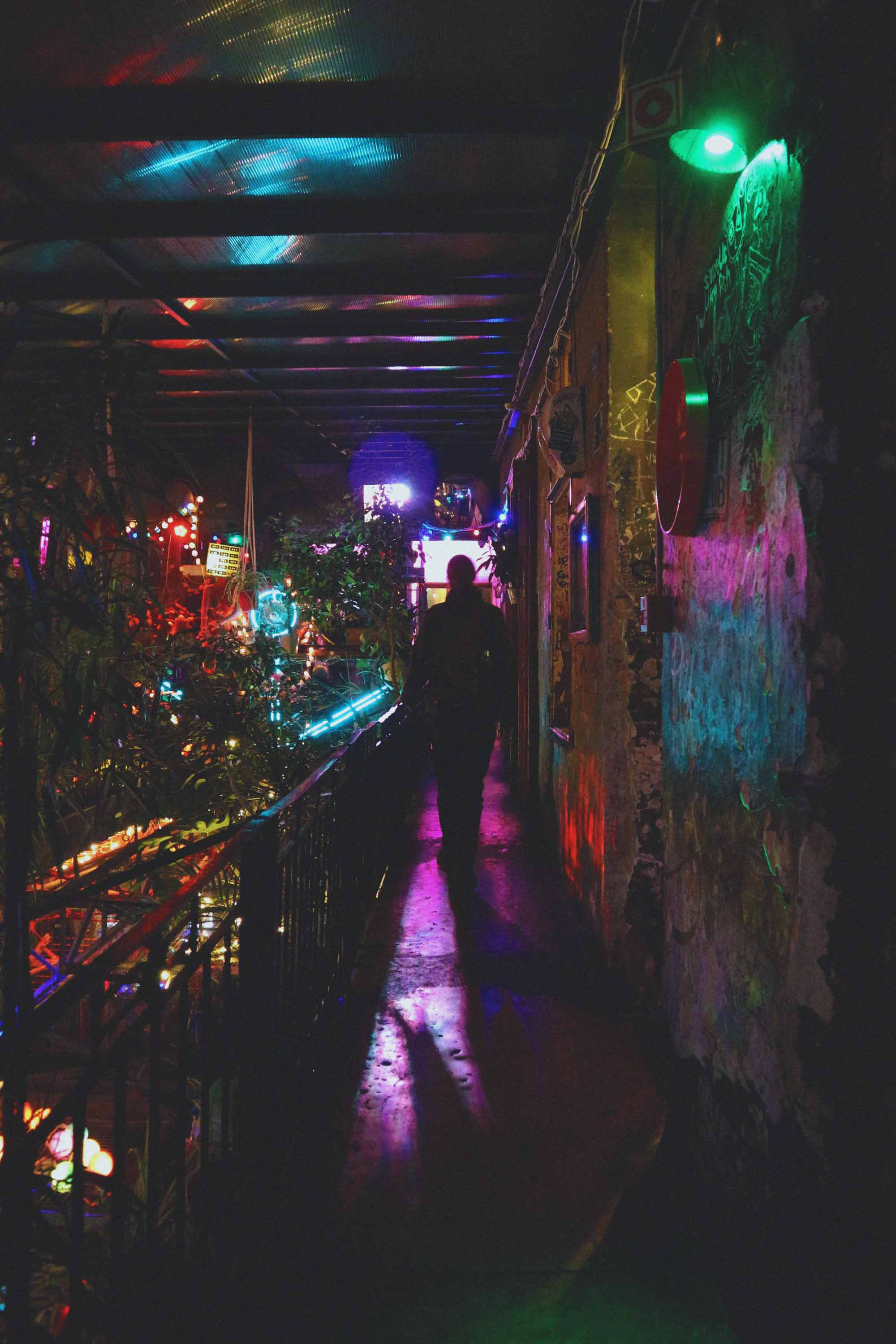 Szimpla Kert by night, palm plants and colourful lighting