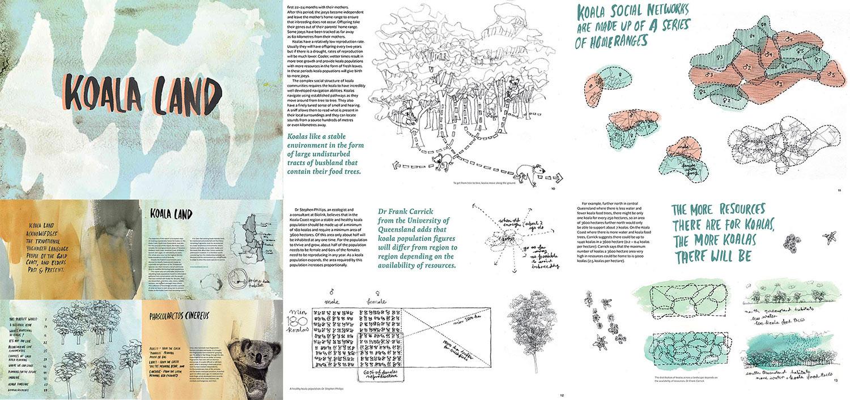 koala-land-design.jpg