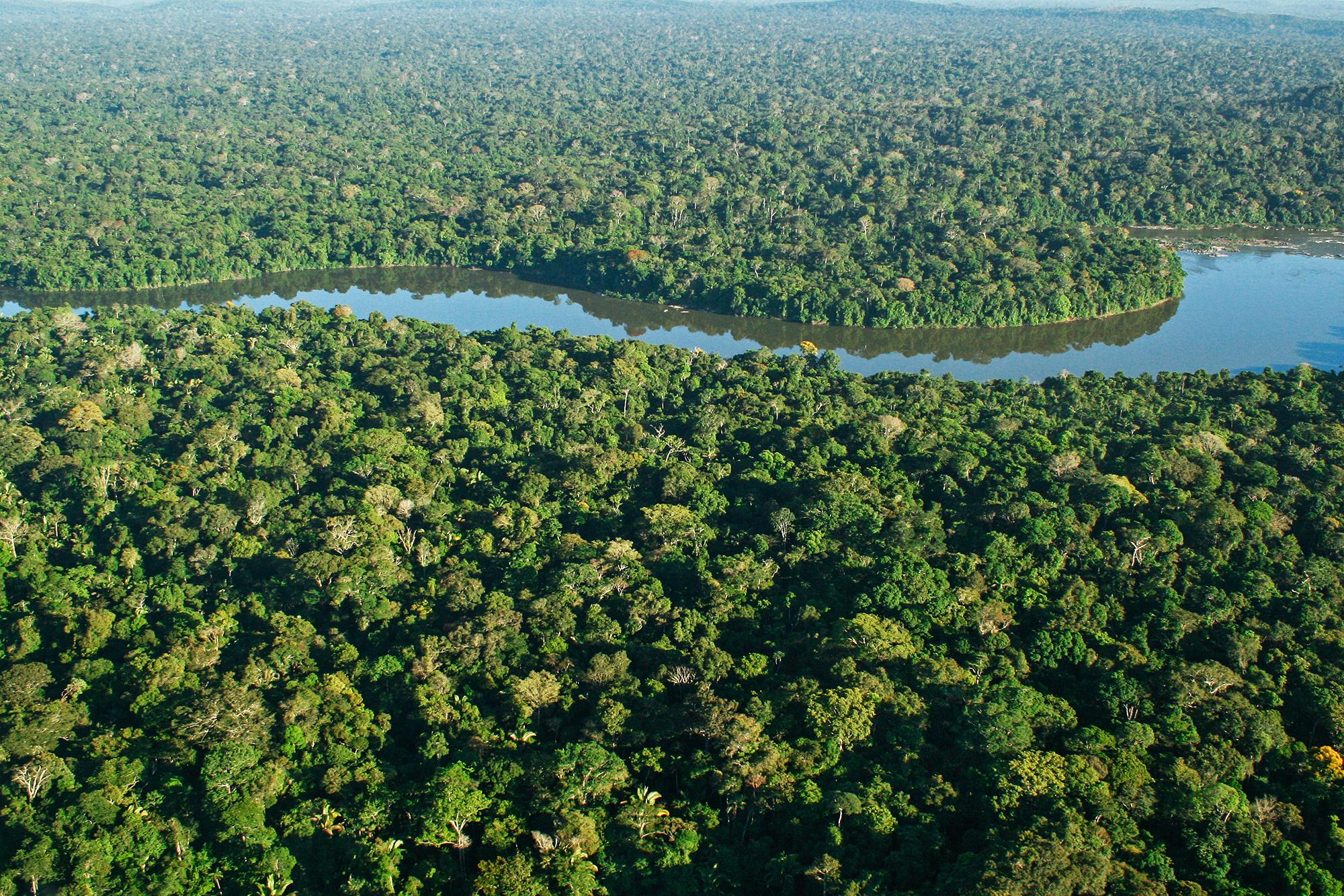 Amazonas JPEG_web.jpg
