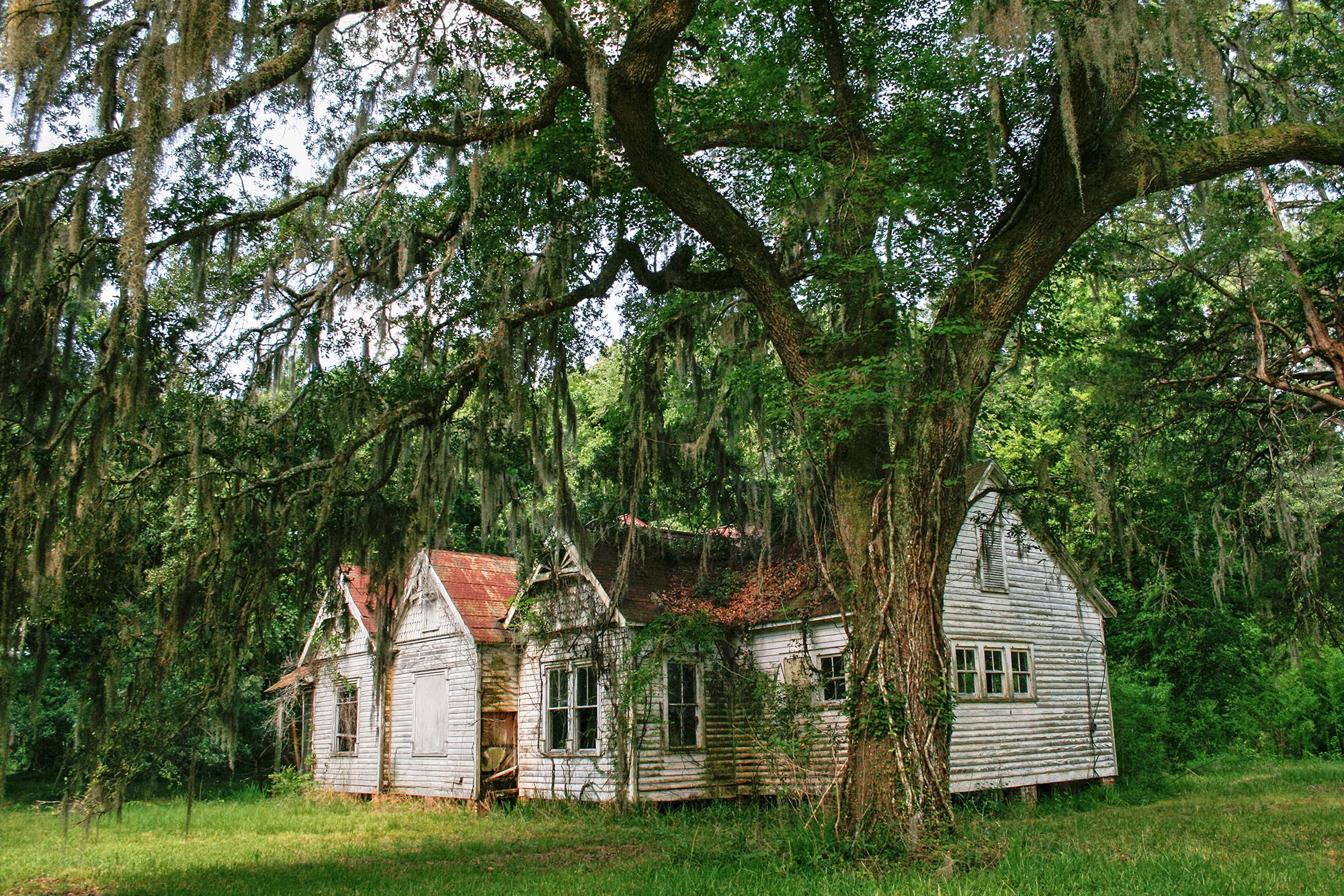 Charleston JPEG_web.jpg