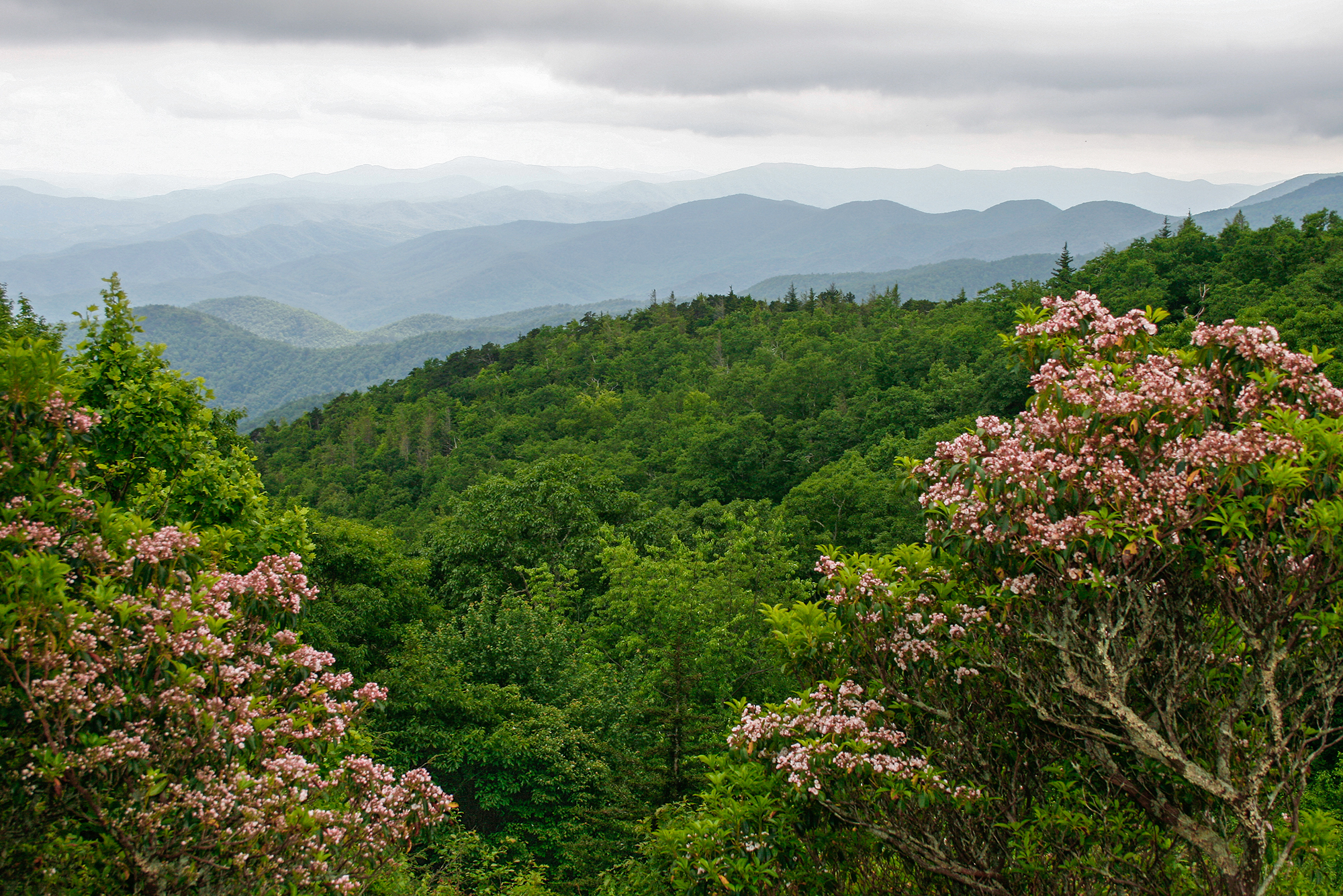 Blue Ridge Mountains 6 JPEG_web.jpg