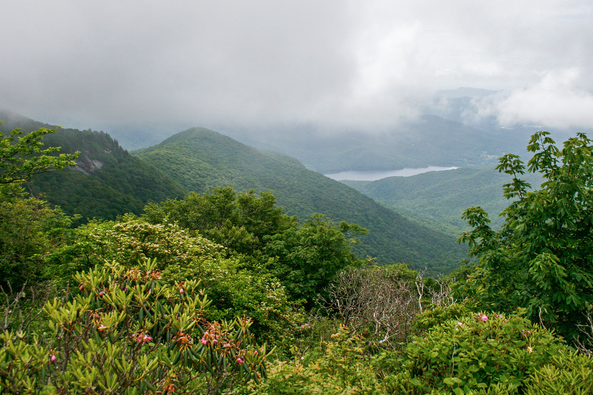 Blue-Ridge-Mountain-JPEG_web 5.jpg