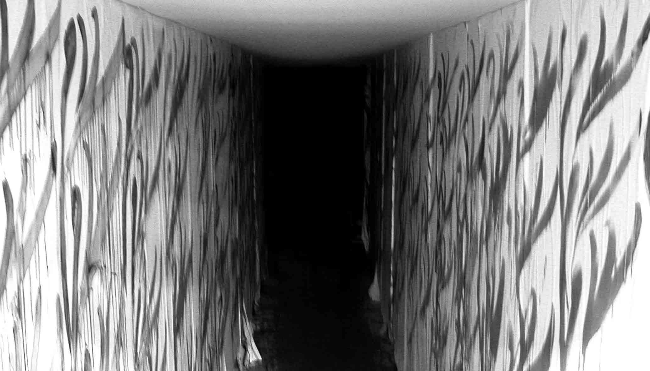 alfred_tarazi_fragments_silent_film_aub_fyp_4.jpg