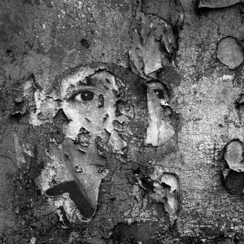 alfred_tarazi_-weepingwalls-eyes2008.jpg