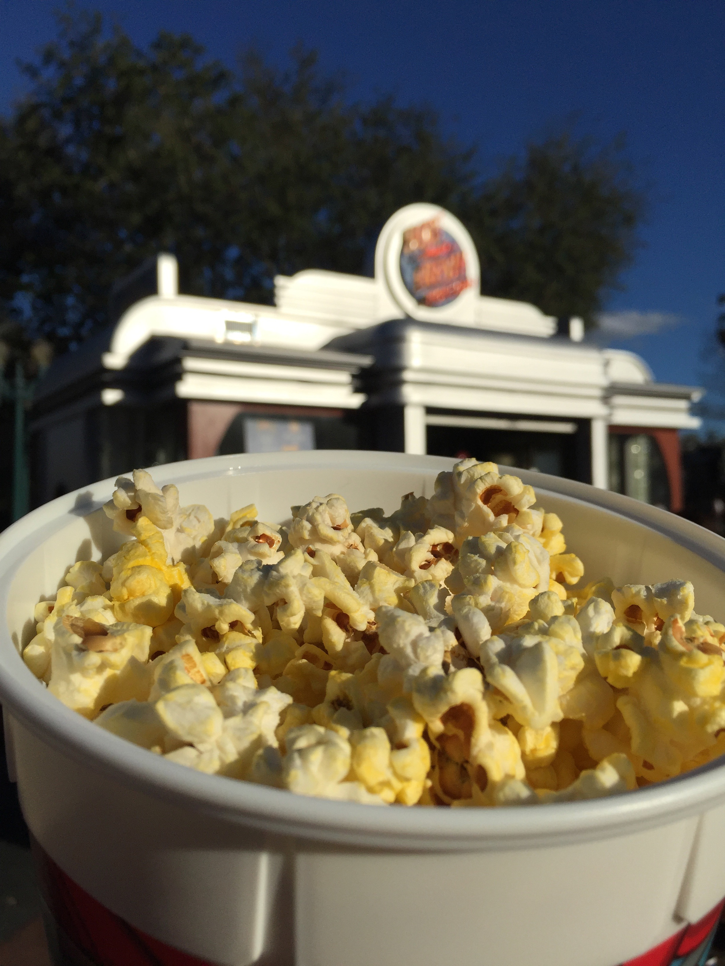 The popcorn bucket is one of the best investments we have made.