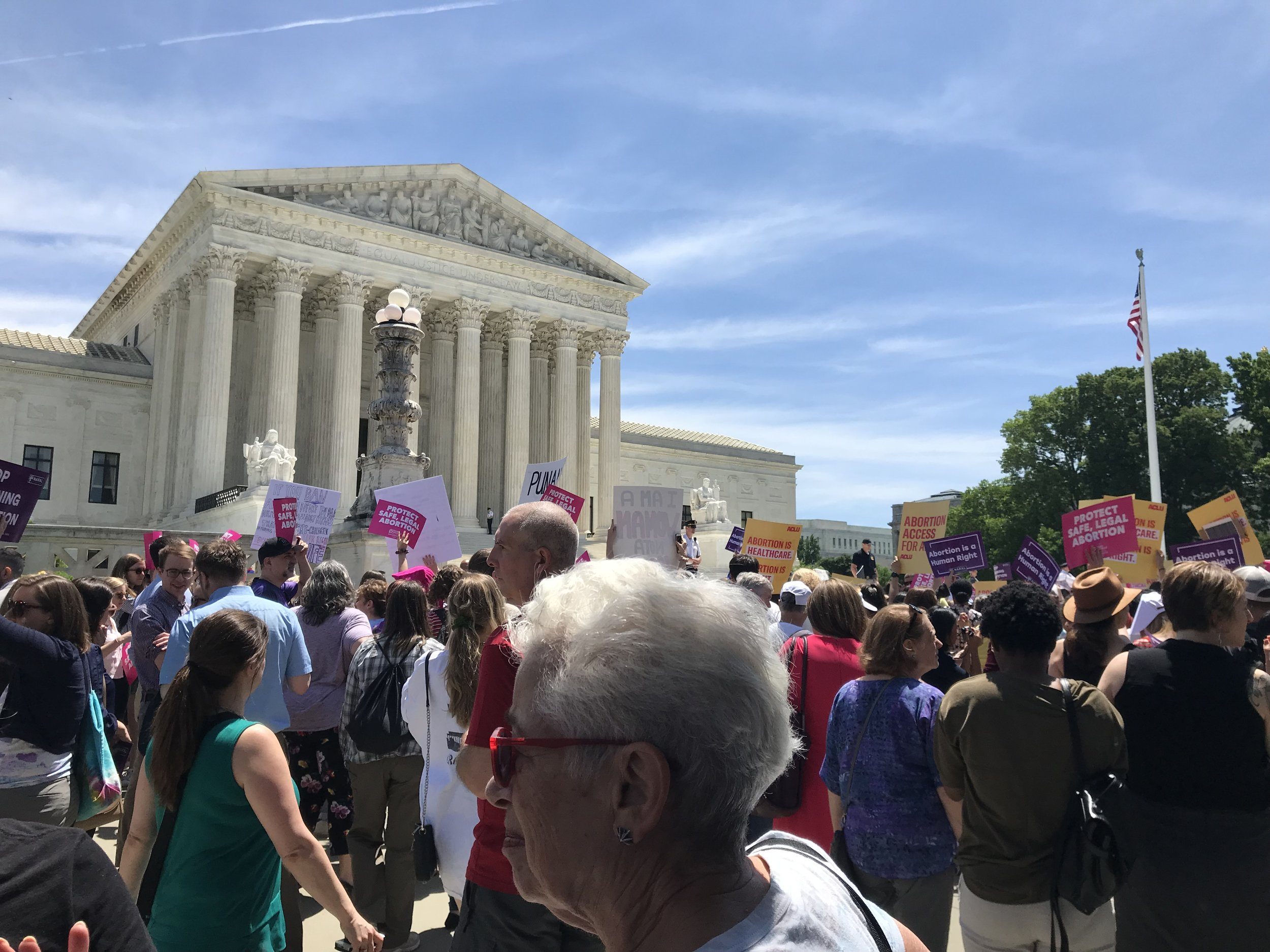 NOPEsters attend the pro-abortion rally in front of the Supreme Court. (May 2019)