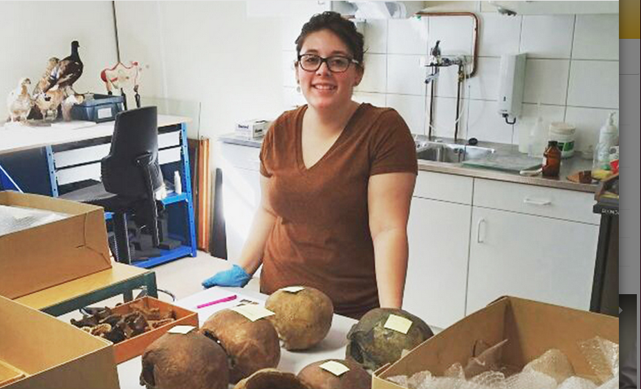 Ashley Blackburn processing skulls at University of Groningen. Photo credit: CMU News