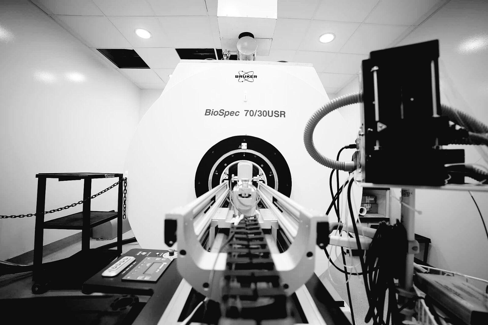 Bruker 7T animal scanner.