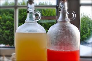 Rebel Juice - probiotic, fermented & alive