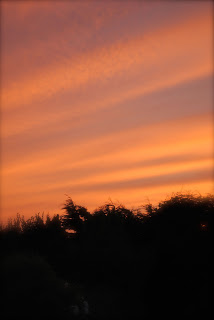 april-danann-red-sky.jpg