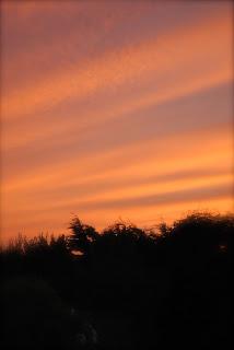 april-danann-red-sky-leap.jpg
