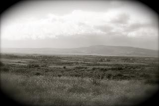 april-danann-distant-shore.jpg