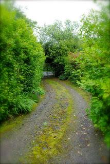 april-danann-LIfes-a-Path.jpg