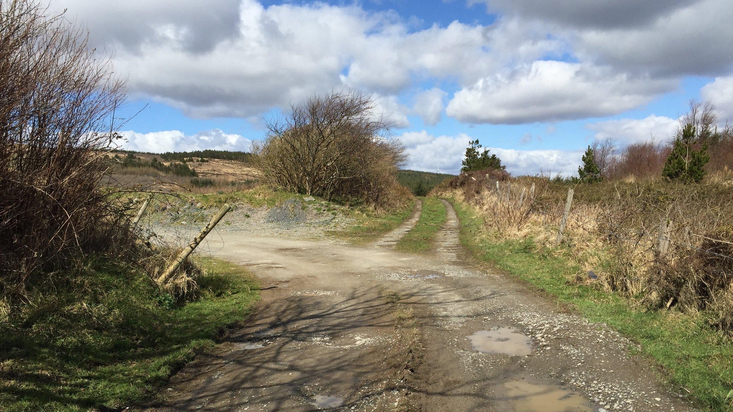 april-danann-fork-in-the-road.jpg