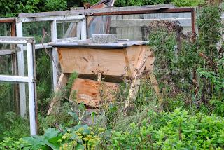 april-danann-Top-Bar-new-hive-0ct-2013 .jpg