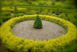 april-danann-Circles-in-Labyrinth.jpg