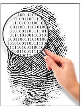 forensic_image2.jpg