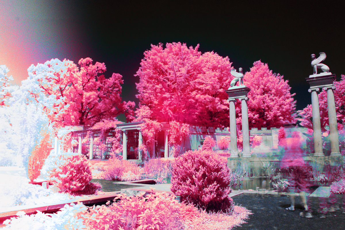 Copy of Infrared World - by Josh Huitz
