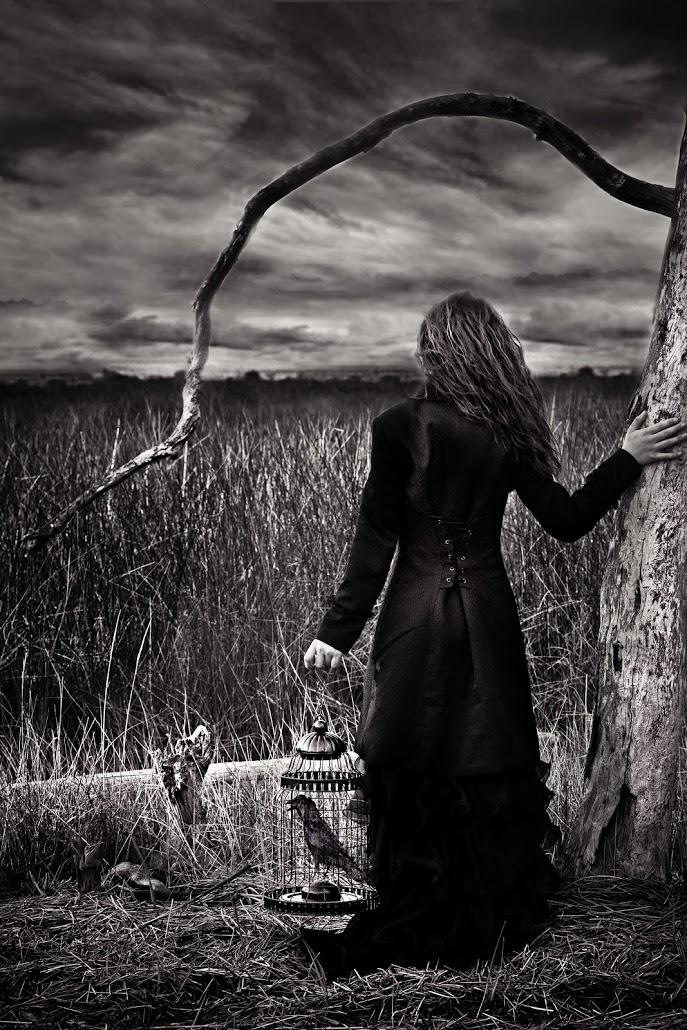 Seeking Freedom - by Kimberly Krauk