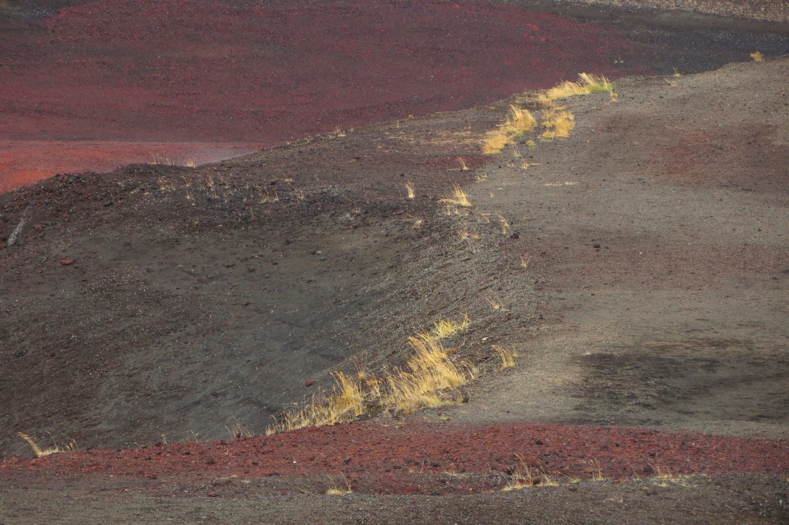 Photographer:  Monica Melissano   Country:    Italy  Title:  Lava - Close Up (Myvatn)