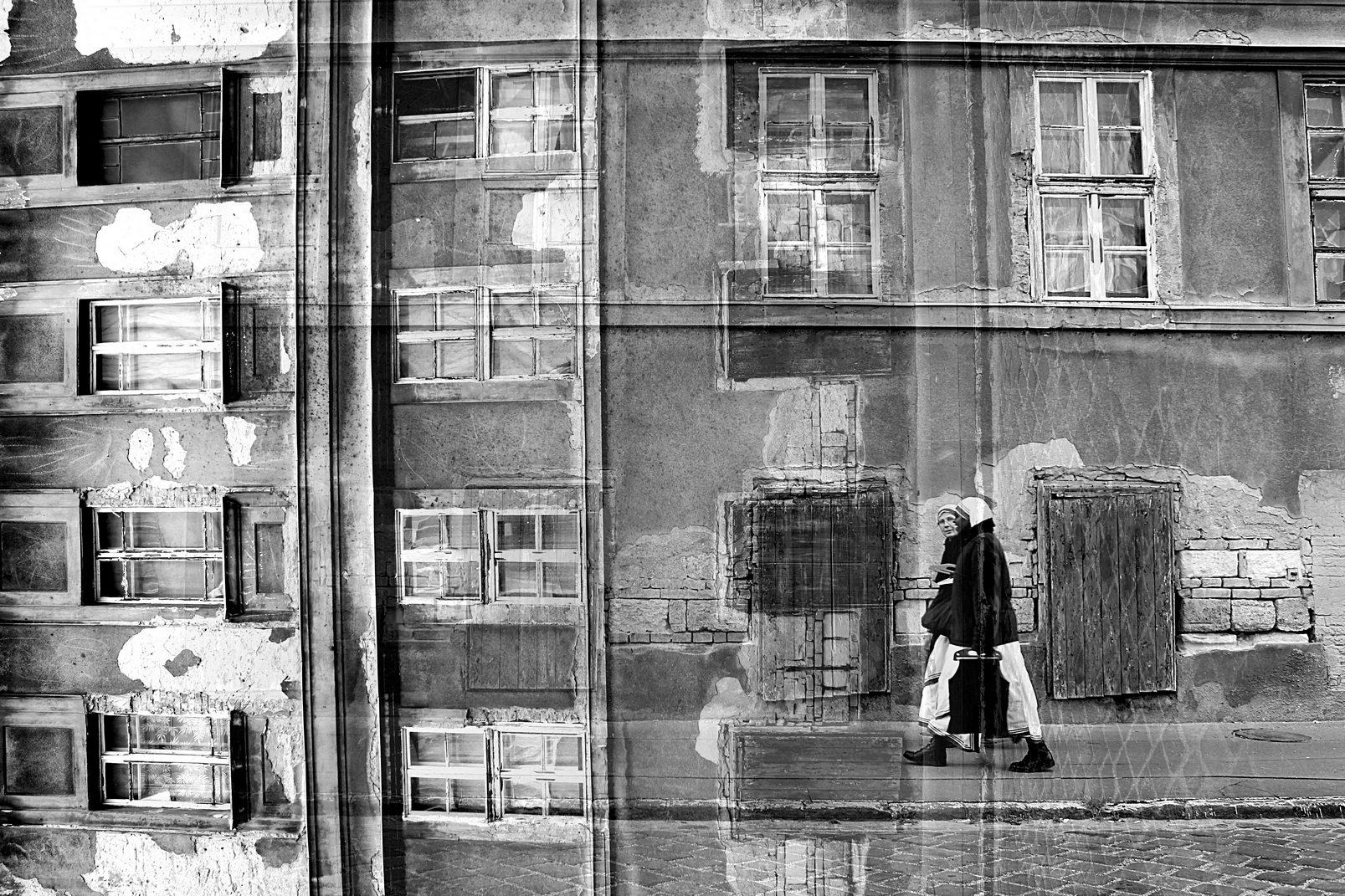 Photographer: Kaori Iwaski   Country: Hungary  Title: Vector