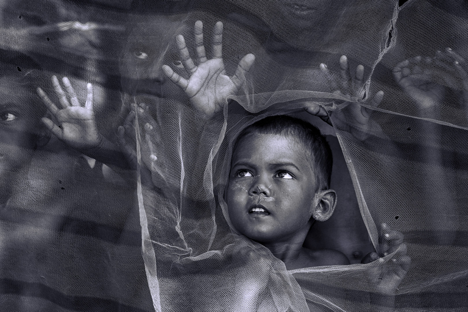 Photographer:  Sanghamitra Sarkar   Country:  India  Title:    Reaching Out
