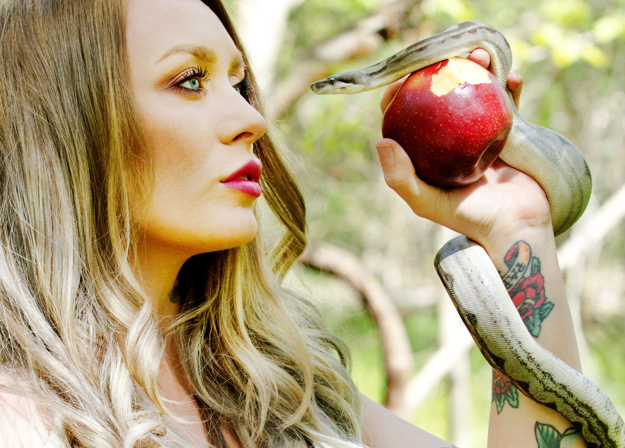 Adam's Apple by Kimberly Kraut