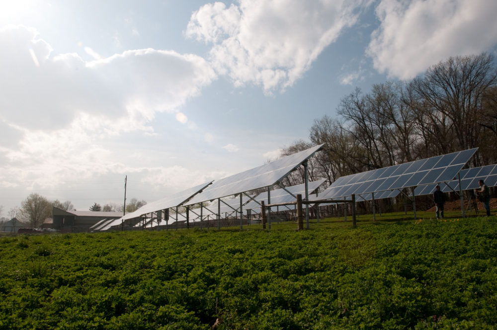 Solar panels on a Pennsylvania farm. Farmers in Michigan may have to give up key tax breaks if they lease farmland for solar arrays. PHOTO BY Lance Cheung / USDA