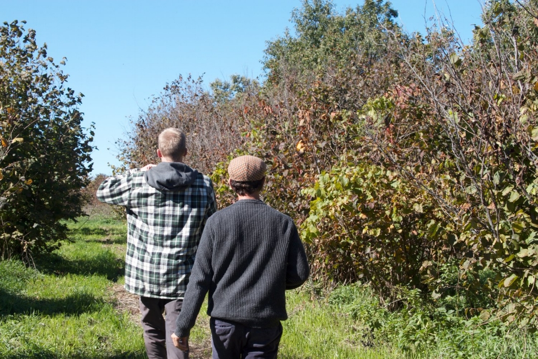 Jeremy Kaufman of Propagate Ventures walks through an organic hazelnut farm in the Minnesota Driftless