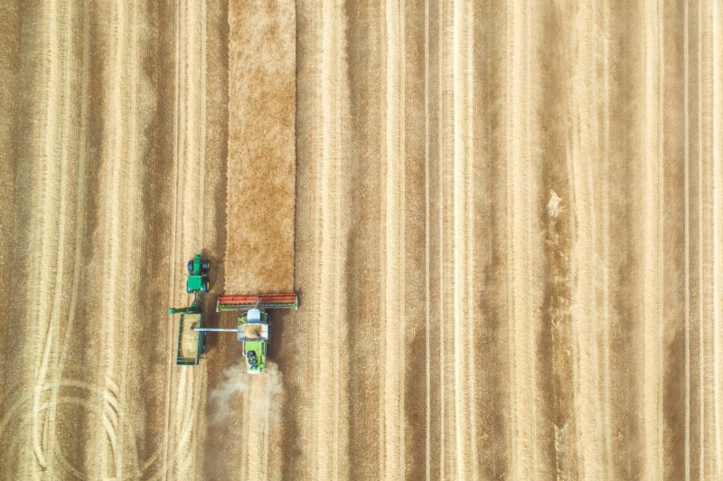 Farmers have tilled soil for generations, turning it over to bury weeds and loosen the ground for seeds. But it turns out that tilling,kills many of the microorganisms that can keep soil healthy and productive. The result is arid and degraded topsoil that easily succumbs to drought. | Photo by  CloudVisual on  Unsplash