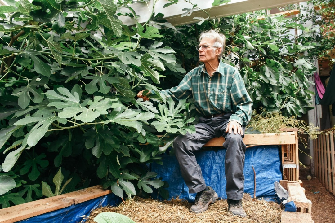 Osentowski in one of his greenhouses.All photos by   Clarissa Wei , VICE