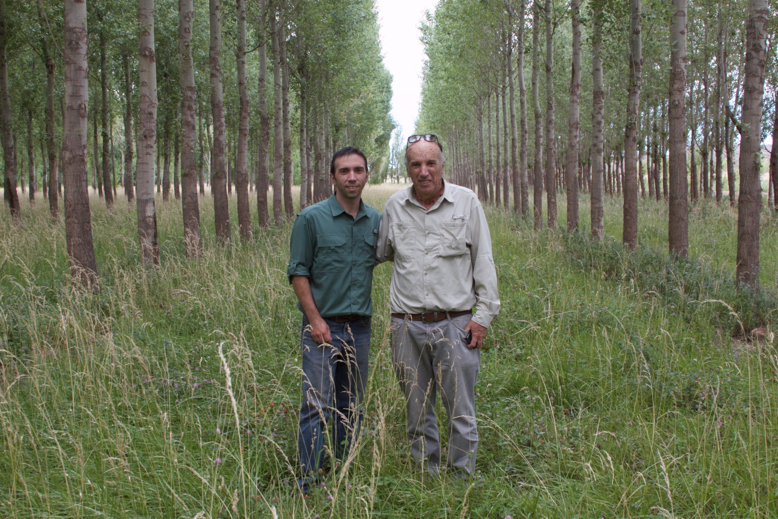 These men measure their age in  turnos de corte : intervals of 12-15 years, or the time it takes to plant and cut down a poplar tree. Pictured here are Norberto Serventi and his son Mauro. Norberto is a former forester and a keeper of the region's poplar knowledge. Mauro has followed in his father's footsteps and is also a forester.