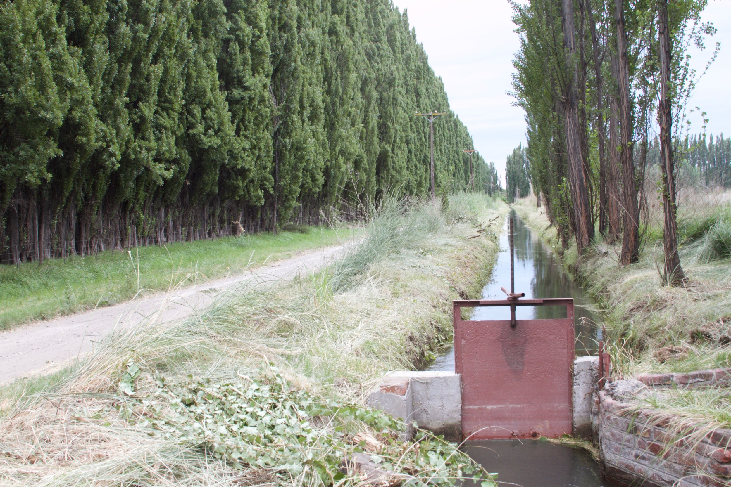 """In the valley there exists the profession of """"irrigator:"""" An irrigator rides around on a motorcycle, and opens/closes the floodgates on schedule."""