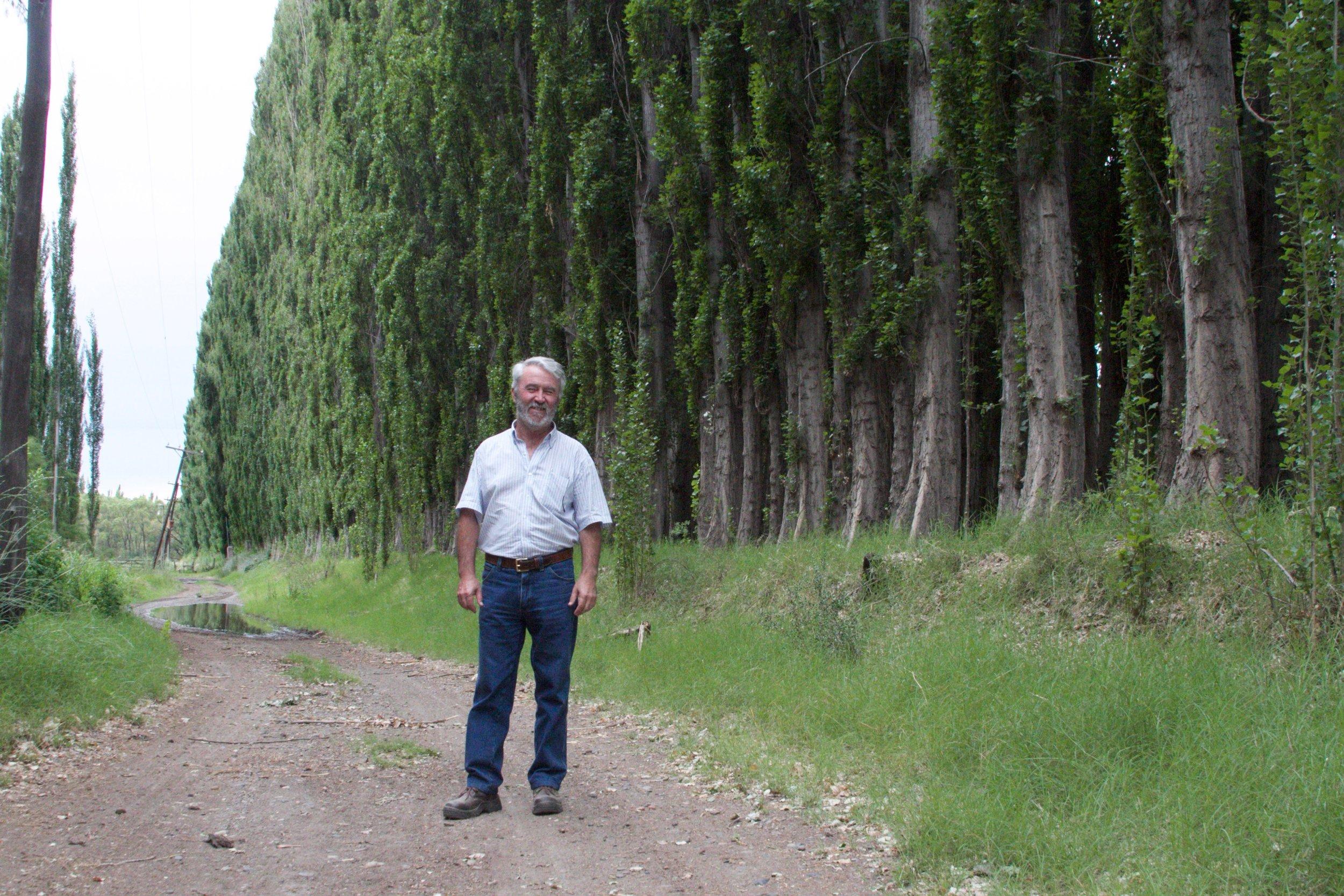 Julio Garcia, state forester, and a colossal poplar windbreak.