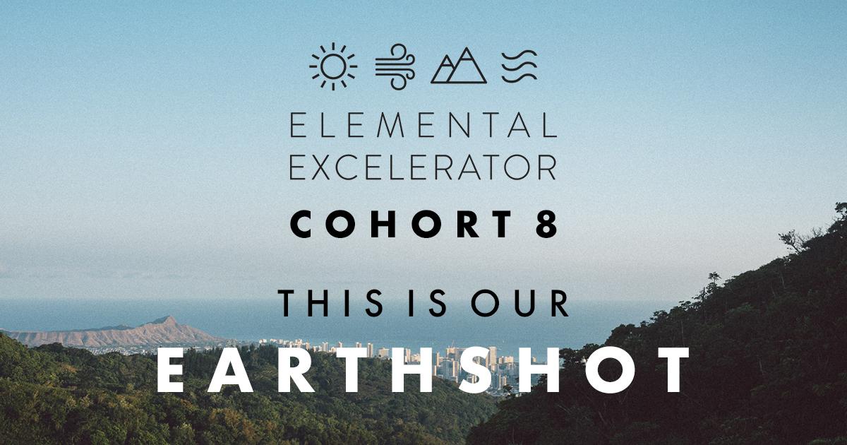 Cohort 8 - Earthshot 1.jpg
