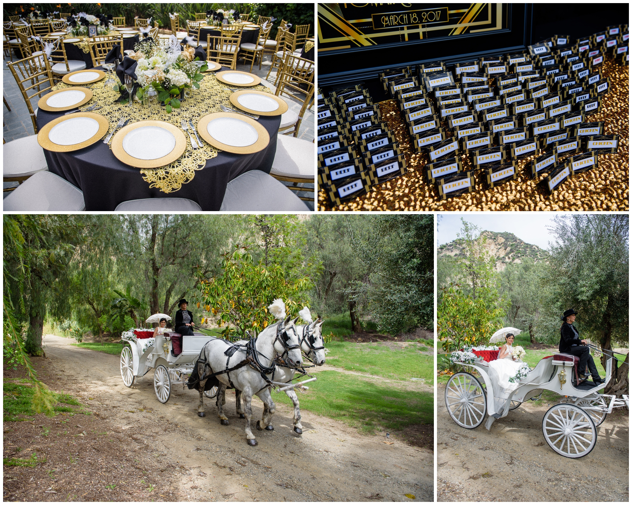 lunabellaphotos- new hall mansion-horse-carrige