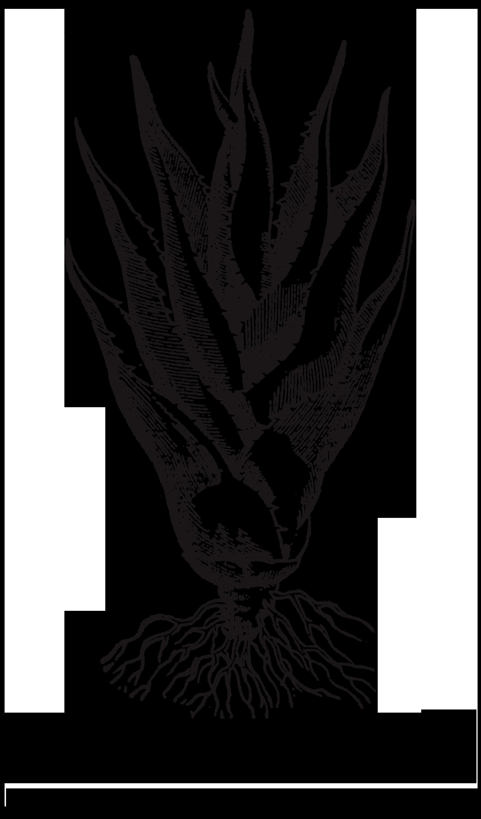 sacred_logo_tall.png
