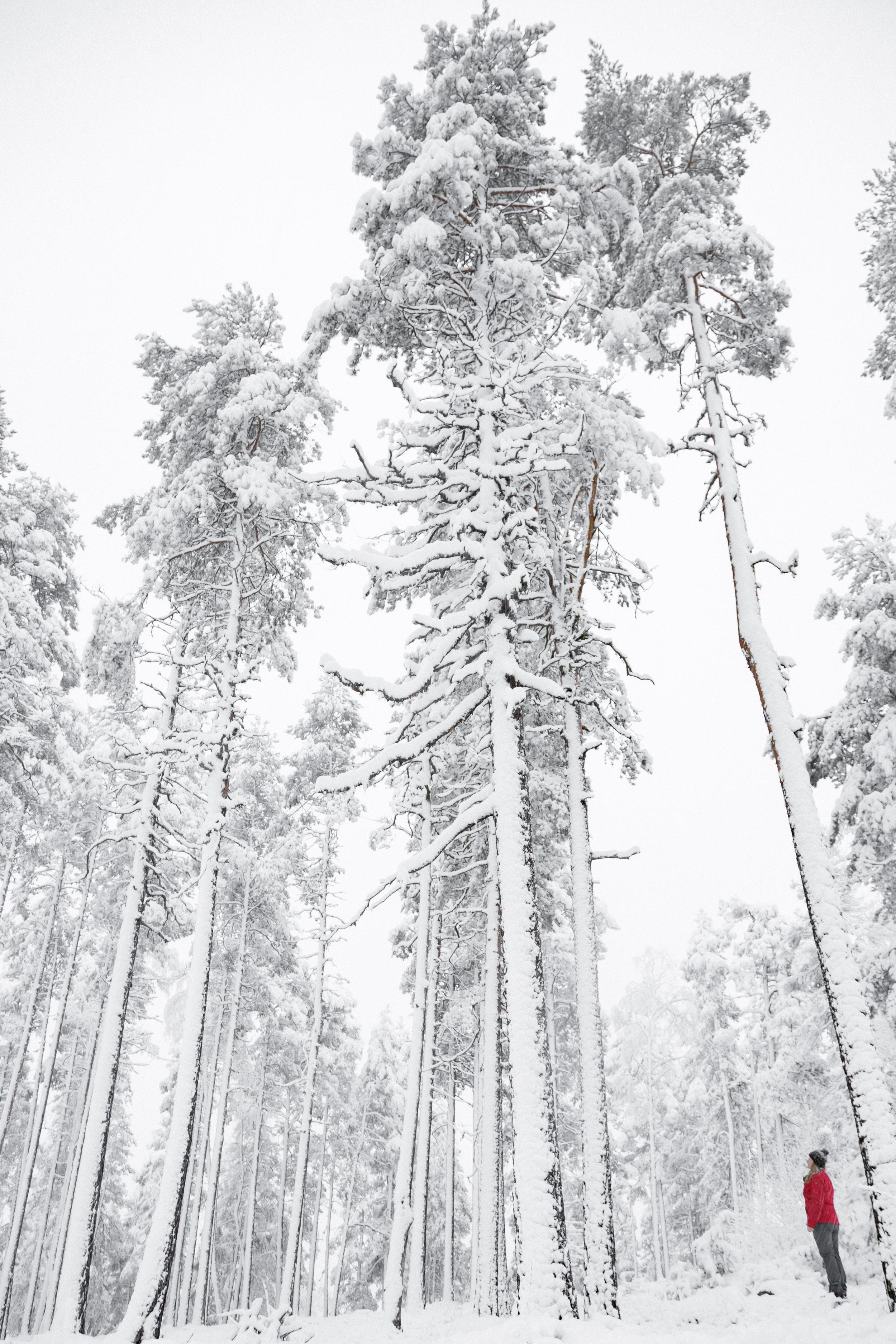 15-winter-fresh-snow-hiking-adventure-finland-anna-elina-lahti-photographer.jpg