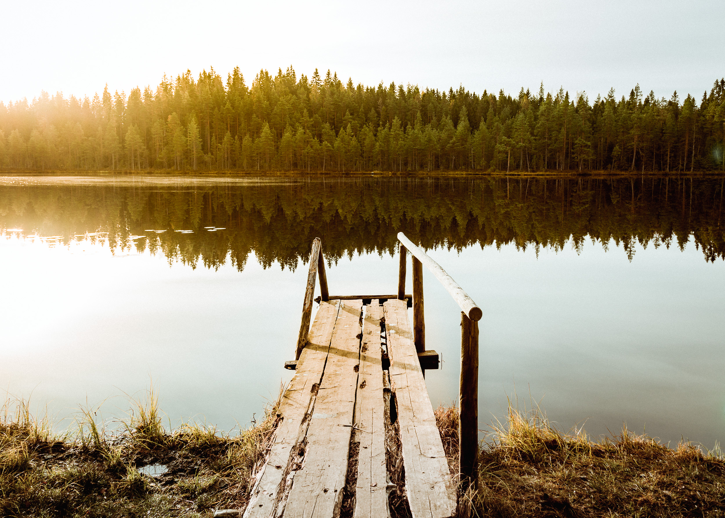 39-seitseminen-national-park-finland-sunrise-hiking-anna-elina-lahti-photographer.jpg