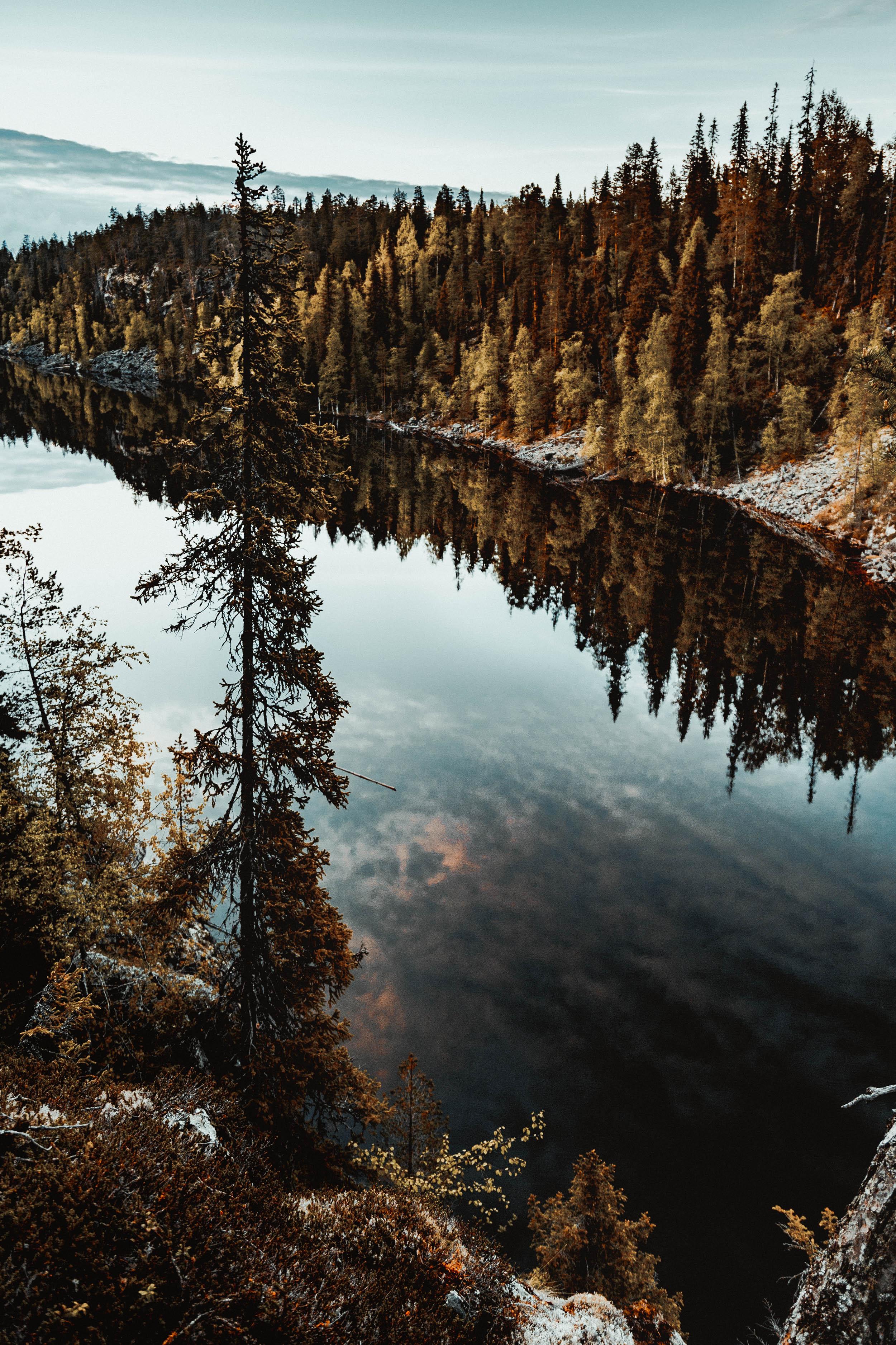 15-finland-hossa-national-park-hiking-kansallispuisto-anna-elina-lahti-photographer.jpg