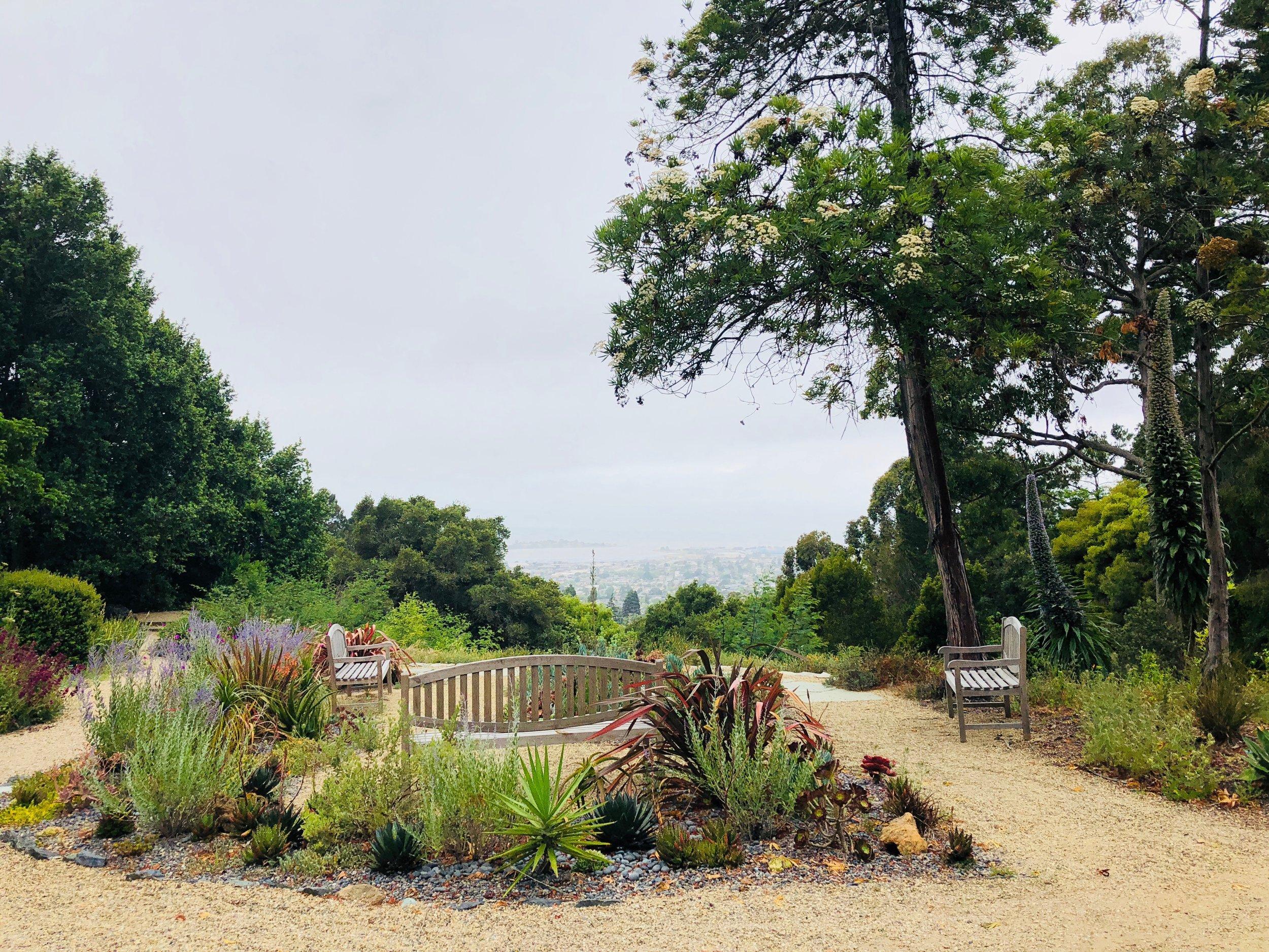 Blake Garden overlook in Fall 2018. Photo by Sahoko Yui.